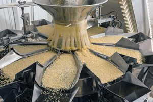 Automated food factory make fresh pasta, studio shot