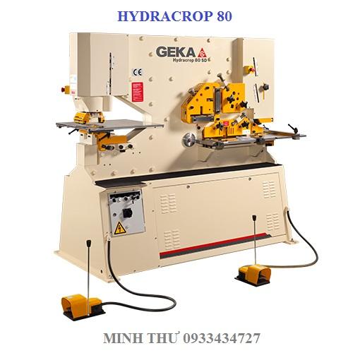 MÁY CẮT ĐỘT THỦY LỰC HYDRACROP 80SD/150