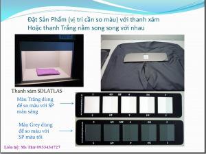 HDSD1