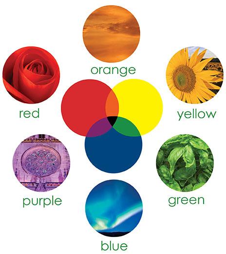 perception-color